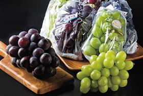 4種のブドウの食べ比べセット